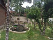 Bán nhà vườn nghỉ dưỡng, view sông, view Đảo Đại Phước
