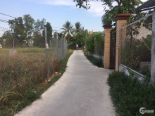 Bán 1.932m2 đất vườn gần chợ Hưng Long Bình Chánh