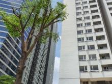 Cần bán gấp chung cư Riverside 90 Nguyễn Hữu Cảnh.  - Căn góc DT 58 m2