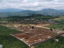 Khu đất nền biệt thự nghỉ dưỡng biệt lập Tp Bảo Lộc .