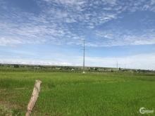 Bán lô đất Tại Hồng Thái -Bắc Bình, Giá 50k/m2, SHR 10327m2. Công chứng ngay