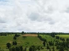 Bán đất thực, giá thực 50 triệu/1,000m2 , sổ đỏ riêng