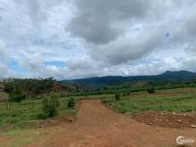 Kẹt dịch tôi bán gấp miếng đất chính chủ full thổ cư 160m2 chỉ 750tr Bảo Lộc