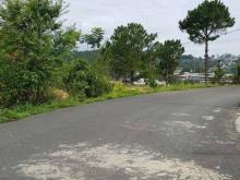 Thanh lý gấp lô đất ở Lý Thường Kiệt, Bảo Lộc, Lâm Đồng, SHR, giá 950tr