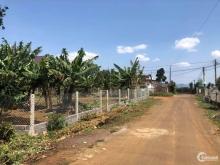 Bán Gấp 1 Sào(1005M2) Đất Liền Kề Kcn Becamex Có Sẵn Vườn Giá 580Tr - Bao Sổ