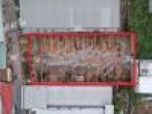 Bán 500m2 đất nền biệt thự ngay trung tâm P. An Khánh Q. Ninh Kiều