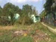 Bán lô Đất góc 2 mặt hẻm đường Đan 1,5m( chuẩn bị mở rộng 4m), Xã Phước Hiệp, Bến Lức